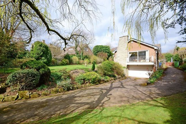 Thumbnail Bungalow for sale in Dore Road, Dore, Sheffield