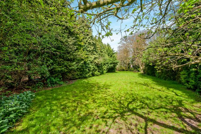 Thumbnail Detached bungalow for sale in Cromwell Road, Weeting, Brandon