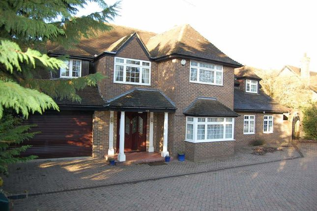Thumbnail Detached house to rent in Old Bedford Road, Luton