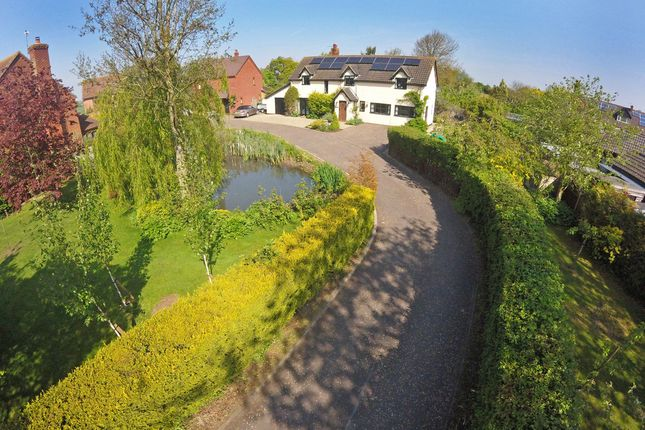 Thumbnail Detached house for sale in Fuller's Close, Toft Monks, Beccles