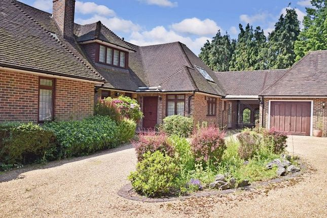 Thumbnail Detached house for sale in Birch Hill, Croydon, Greater London