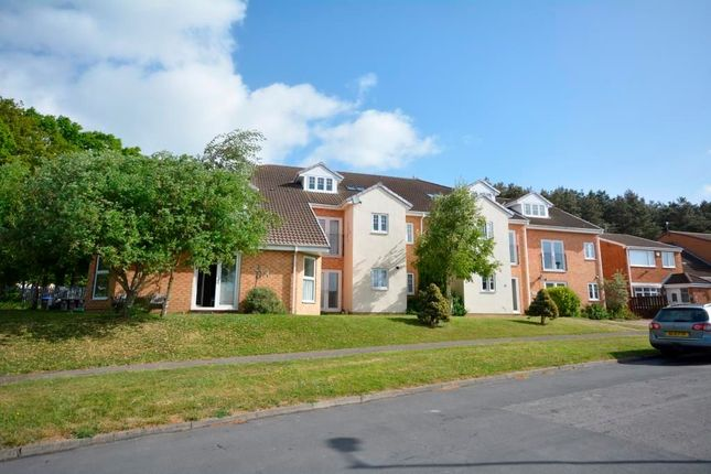 Thumbnail Property to rent in Middlewood, Ushaw Moor, Durham