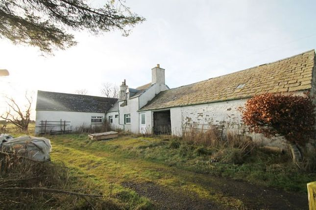 Thumbnail Detached house for sale in Bridgend Farmhouse And Cottage, Watten, Caithness KW15Uj
