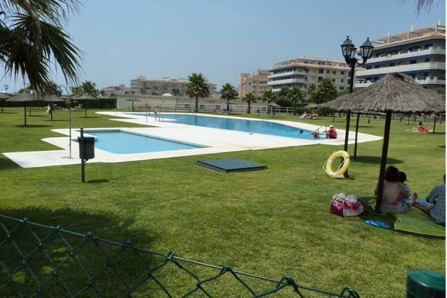 Communal Swimming  Pool And Children's Pool