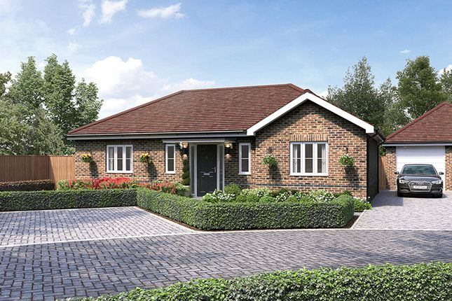 Thumbnail Detached bungalow for sale in Oaklands, Ongar Road, Great Dunmow
