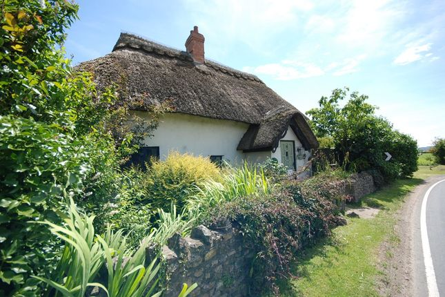 2 bed detached house for sale in Musbury, Axminster