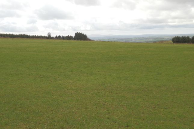 Thumbnail Land for sale in Plwmp, Ffostrasol Road, Llandysul