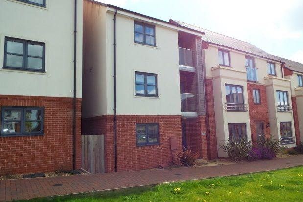 Thumbnail Detached house to rent in Lower Lodge Avenue, Eden Park