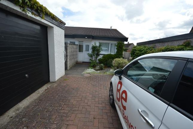 Thumbnail Bungalow to rent in Oakbank Crescent, Perth