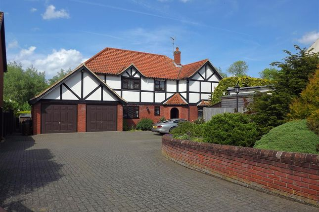 Thumbnail Detached house for sale in Damgate Lane, Acle, Norwich