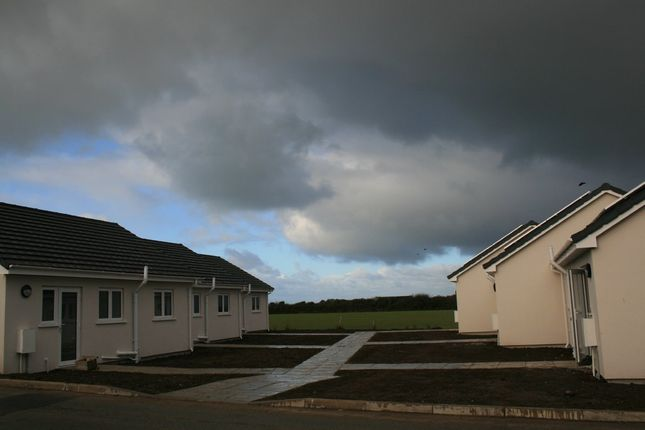Thumbnail Terraced bungalow for sale in St. Merryn, Padstow