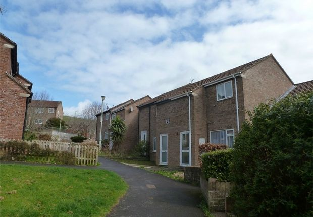Thumbnail Terraced house to rent in Treefield Walk, Barnstaple