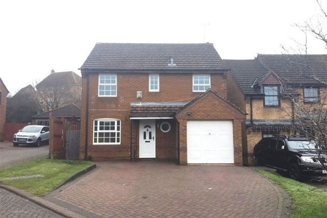 Thumbnail Detached house to rent in Sorrel Drive, Rugby, Warwickshire