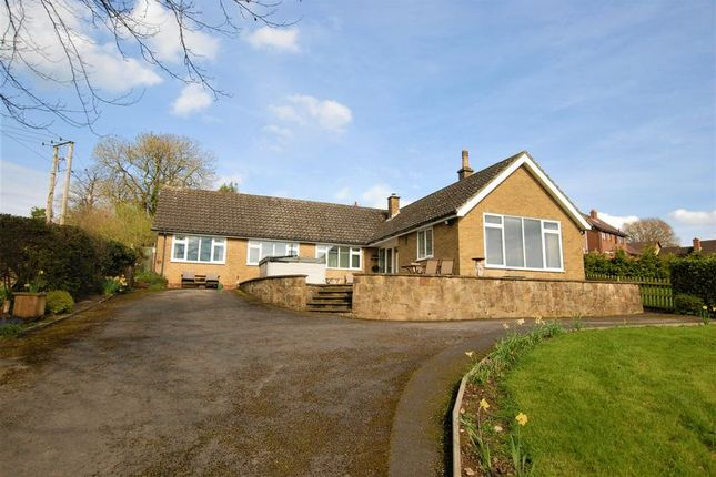 Thumbnail Detached bungalow for sale in Lower Street, Doveridge, Ashbourne