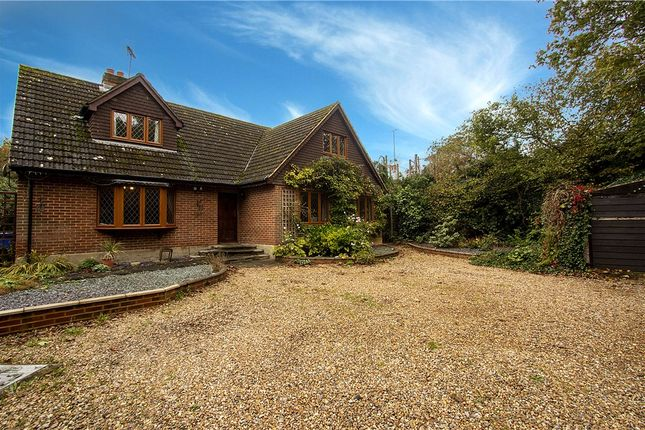 Thumbnail Detached house for sale in Reading Road, Blackwater, Surrey