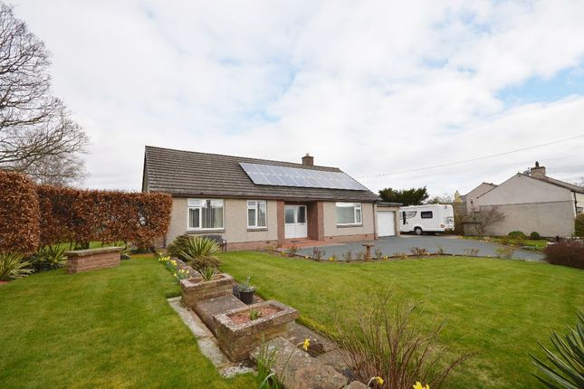 Thumbnail Bungalow for sale in Bolton, Appleby-In-Westmorland