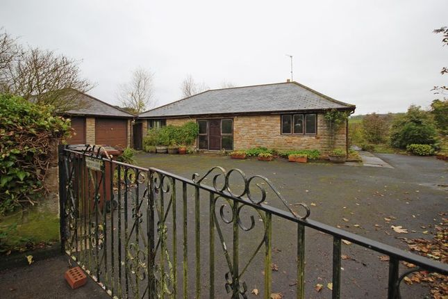 Thumbnail Bungalow for sale in The Dene, Allendale, Hexham