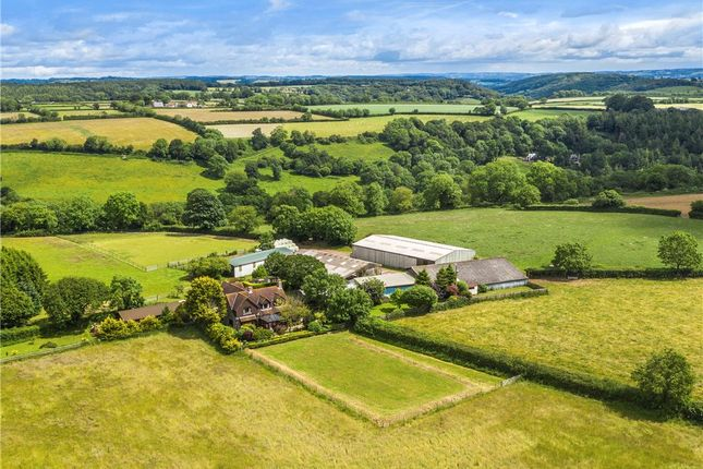 Thumbnail Equestrian property for sale in Branscombe, Seaton, Devon