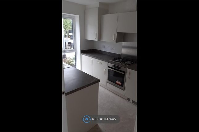 Thumbnail Semi-detached house to rent in Broadway, Manchester