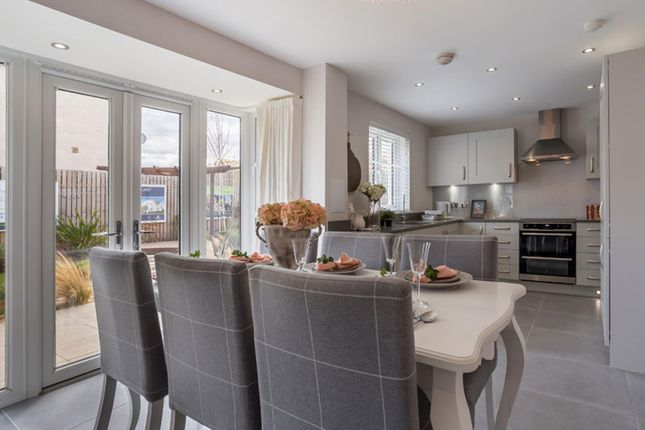 """Thumbnail Detached house for sale in """"Balmoral"""" at Honeysuckle Drive, Cumbernauld, Glasgow"""