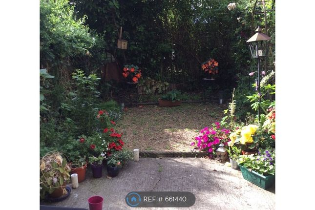 Sunny Garden of Priory Road, London N8