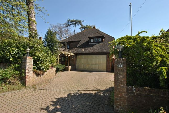 Thumbnail Detached house for sale in Collington Rise, Bexhill-On-Sea, East Sussex