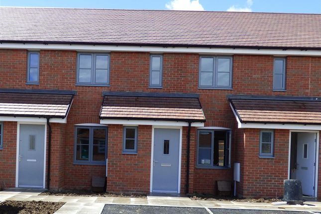 Thumbnail Terraced house to rent in Anstee Road, Shaftesbury