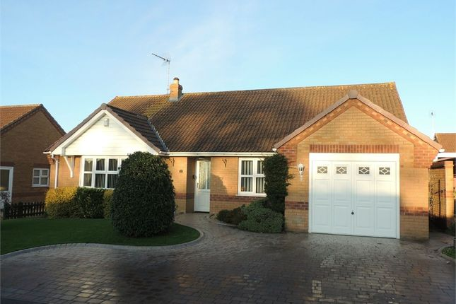Thumbnail Detached bungalow for sale in Harebell Road, Downham Market