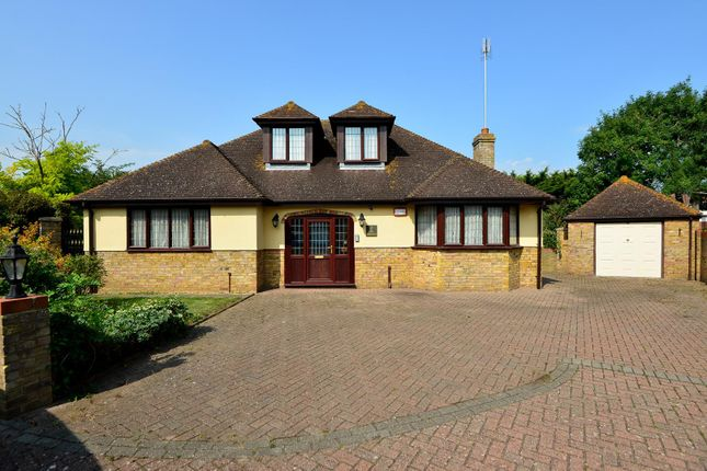 Thumbnail Detached house for sale in The Paddocks, Cliftonville, Margate