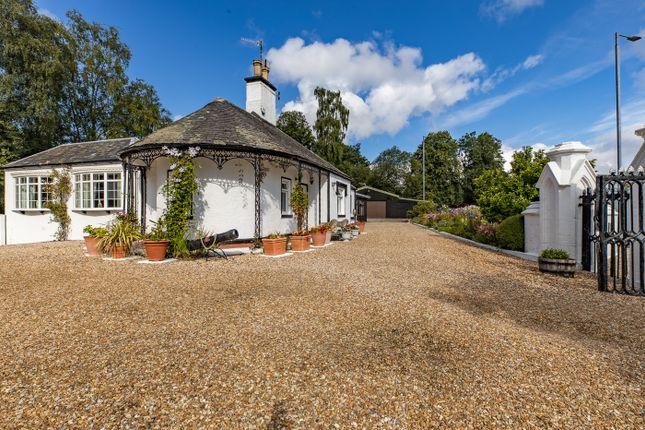 Thumbnail Detached bungalow for sale in Glen Alwyn, Luss Road, Balloch