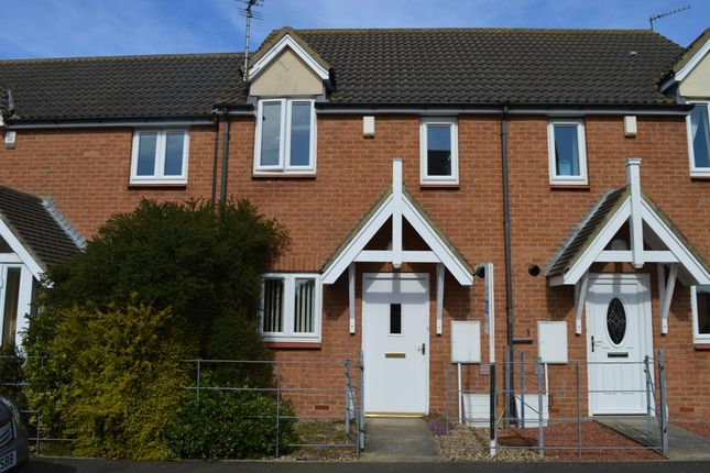 Thumbnail Terraced house to rent in Maple Drive, Widderington