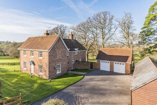 Thumbnail Detached house for sale in Shobley, Ringwood
