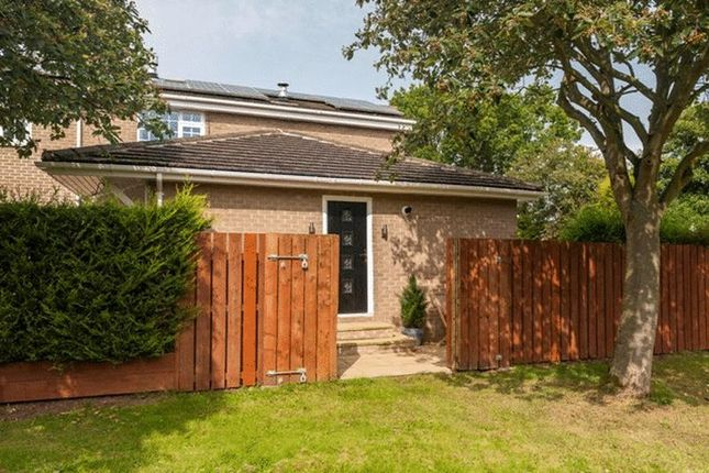 Thumbnail Flat to rent in Badgers Green, Morpeth