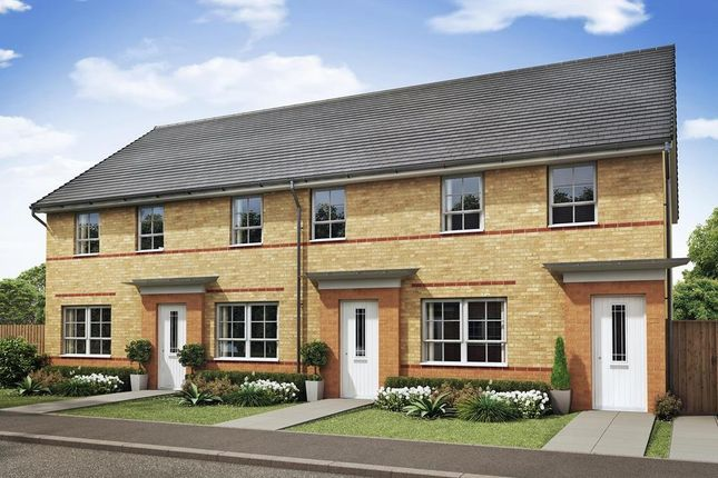 "Thumbnail Terraced house for sale in ""Maidstone"" at The Ridge, London Road, Hampton Vale, Peterborough"