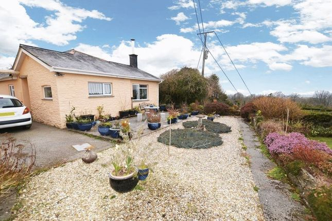 Thumbnail Bungalow to rent in Coxpark, Gunnislake