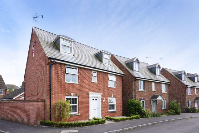 Thumbnail Detached house for sale in Steele Crescent, Wick, Littlehampton