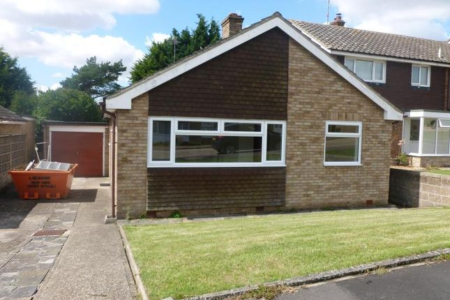 Thumbnail Bungalow to rent in Seafield Road, Dovercourt, Harwich
