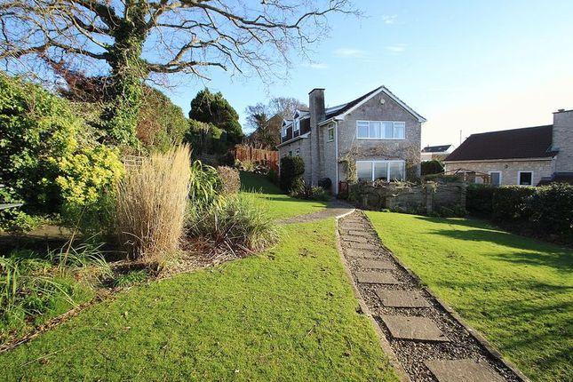 Thumbnail Detached house for sale in Hexton Road, Glastonbury