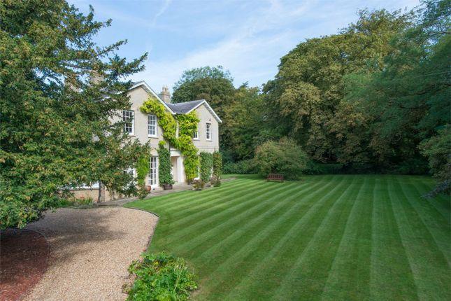 Thumbnail Detached house for sale in Keyston Road, Covington, Huntingdon