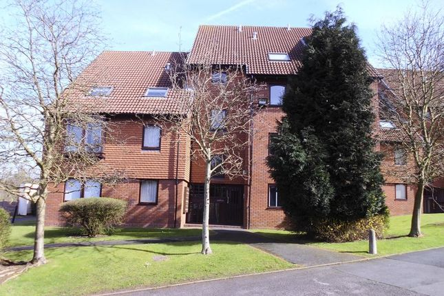 Thumbnail Flat to rent in Moncrieffe Close, Dudley