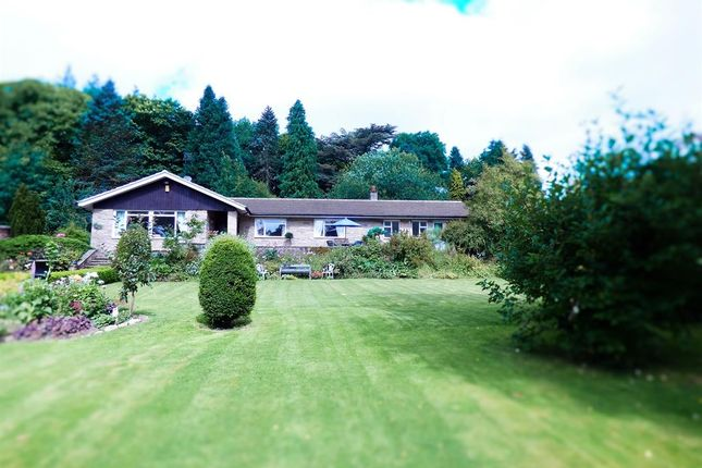 Thumbnail Bungalow for sale in Flasby, Skipton