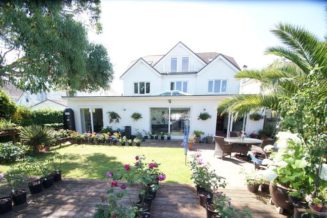 Thumbnail Detached house for sale in Moomba, Barcombe Heights, Preston, Paignton