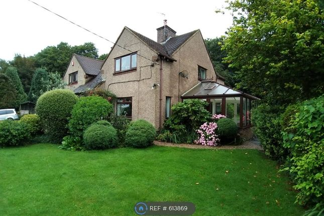 Thumbnail Semi-detached house to rent in Park Lane, Stoke-On-Trent