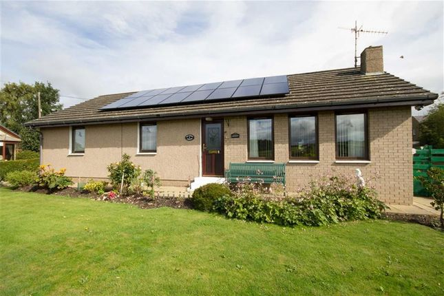 Thumbnail Detached bungalow for sale in Old School Gardens, Wark, Cornhill-On-Tweed