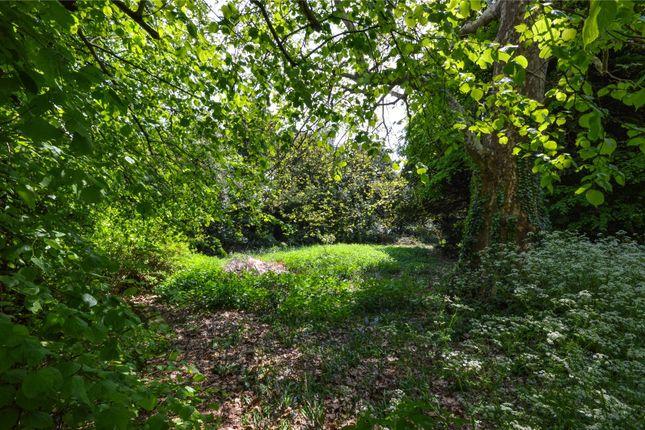 Picture No. 17 of Walden Road, Littlebury, Nr Saffron Walden, Essex CB11