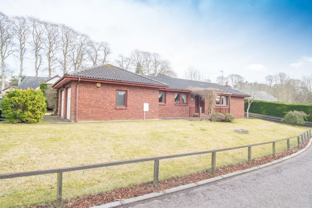 Thumbnail Bungalow for sale in Cottons Corner, Letham Grange, Arbroath