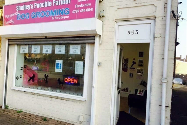 Thumbnail Retail premises for sale in Dog Grooming Parlour PE4, Peterborough