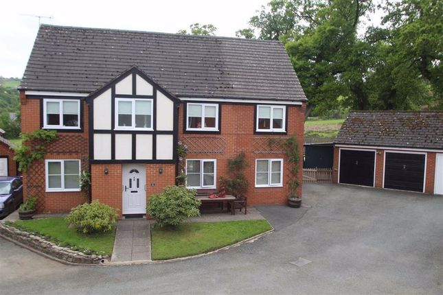Thumbnail Detached house for sale in Bryn Y Coed, Llanfair Caereinion, Welshpool