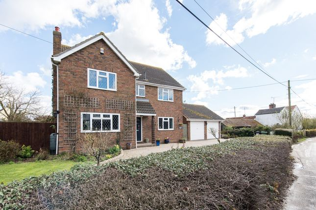 Thumbnail Detached house for sale in The Street, Little Totham, Maldon