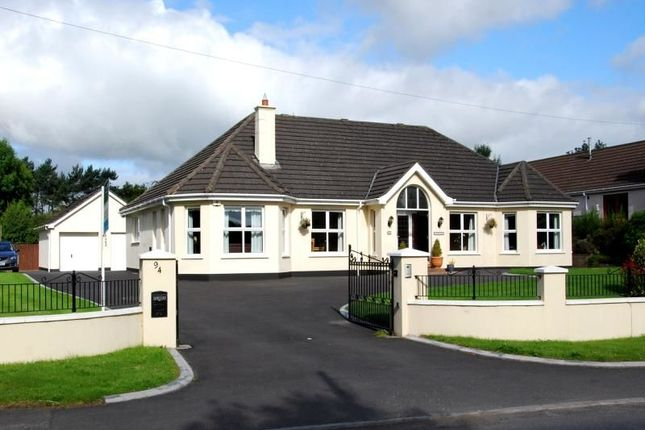 Thumbnail Detached house for sale in The Beeches, Magheraconluce Road, Hillsborough